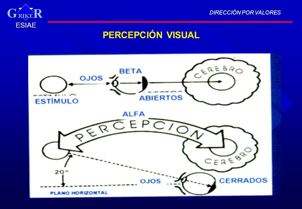 DIRECCIÓN POR VALORES RIKER G ESIAE PERCEPCIÓN VISUAL
