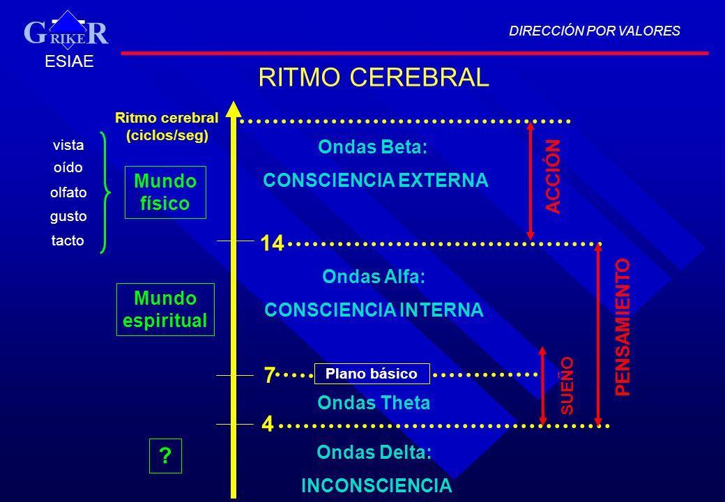 Ritmo cerebral (ciclos/seg)