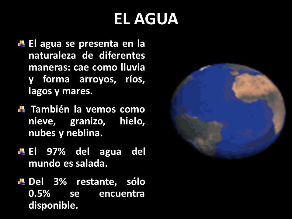 EL AGUA El agua se presenta en la naturaleza de diferentes maneras: cae como lluvia y forma arroyos, ríos, lagos y mares.