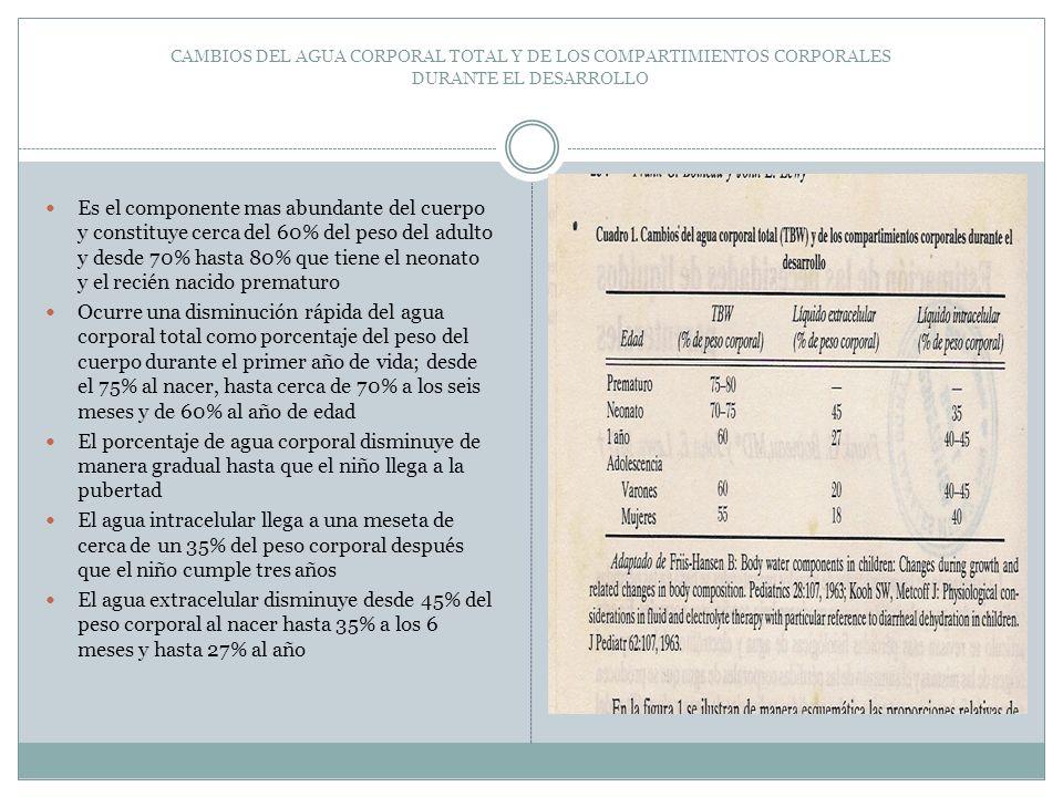 CAMBIOS DEL AGUA CORPORAL TOTAL Y DE LOS COMPARTIMIENTOS CORPORALES DURANTE EL DESARROLLO