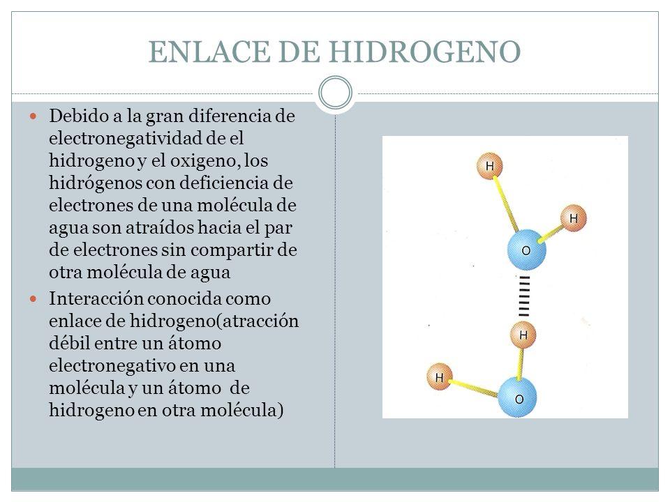 ENLACE DE HIDROGENO
