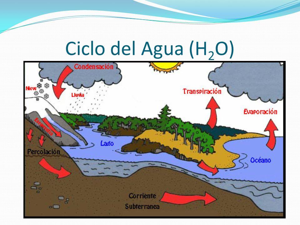Ciclo del Agua (H2O)