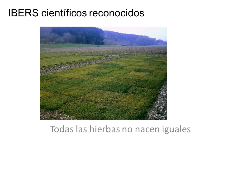Todas las hierbas no nacen iguales
