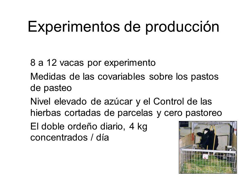 Experimentos de producción