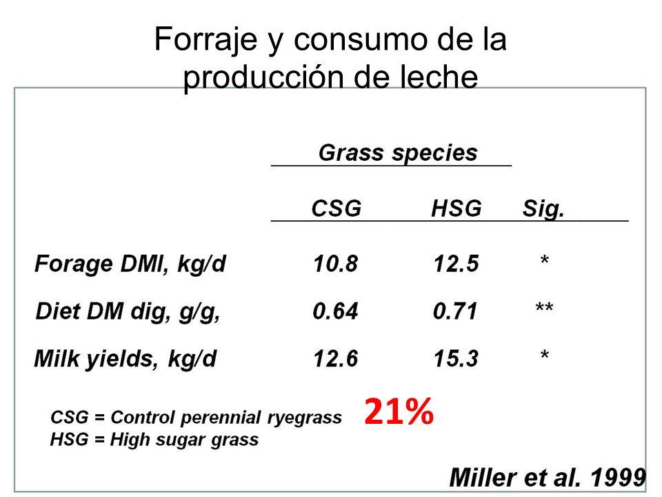 21% Forraje y consumo de la producción de leche