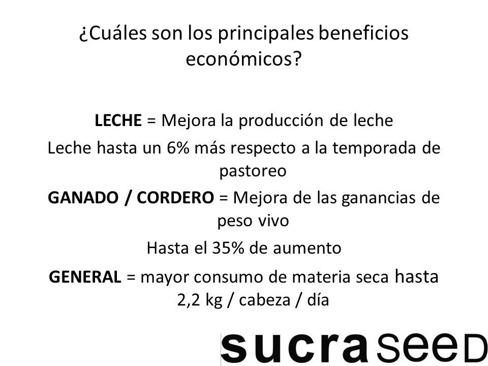 ¿Cuáles son los principales beneficios económicos