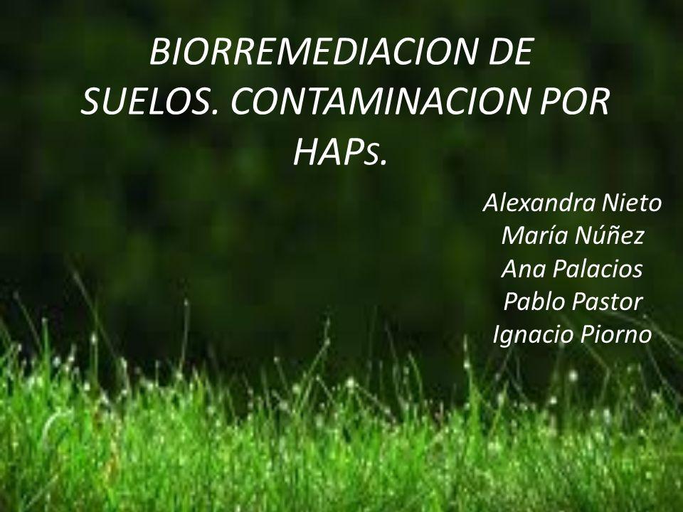BIORREMEDIACION DE SUELOS. CONTAMINACION POR HAPS.
