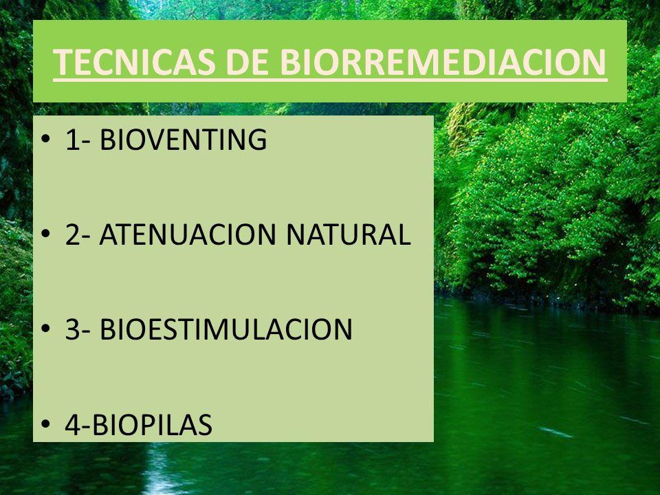 TECNICAS DE BIORREMEDIACION