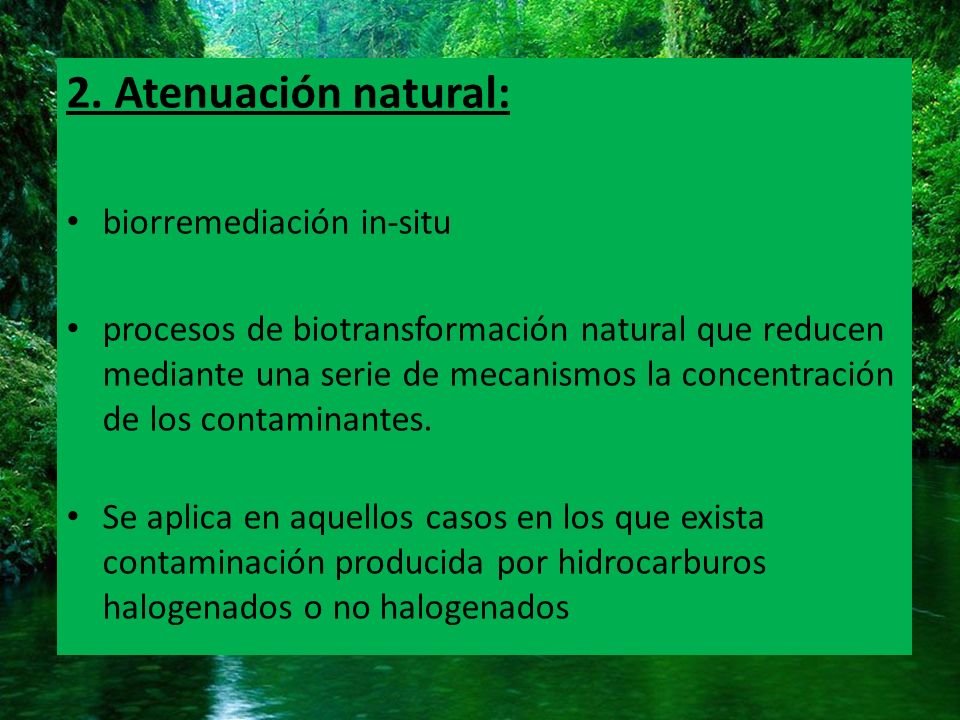 2. Atenuación natural: biorremediación in-situ
