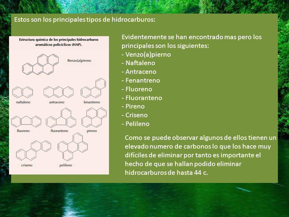 Estos son los principales tipos de hidrocarburos: