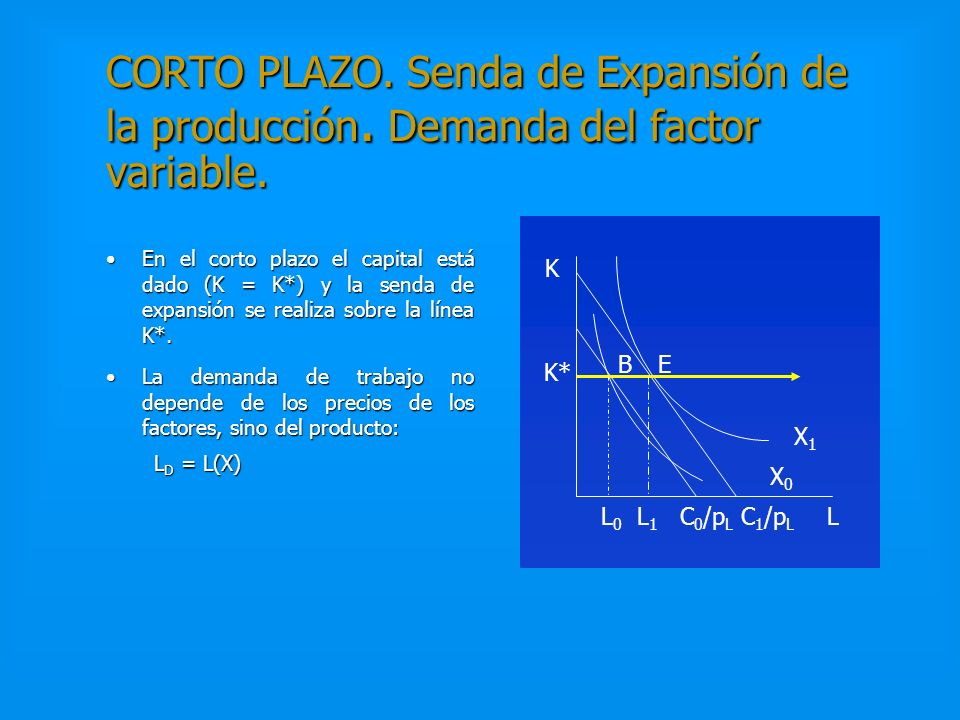 CORTO PLAZO. Senda de Expansión de la producción