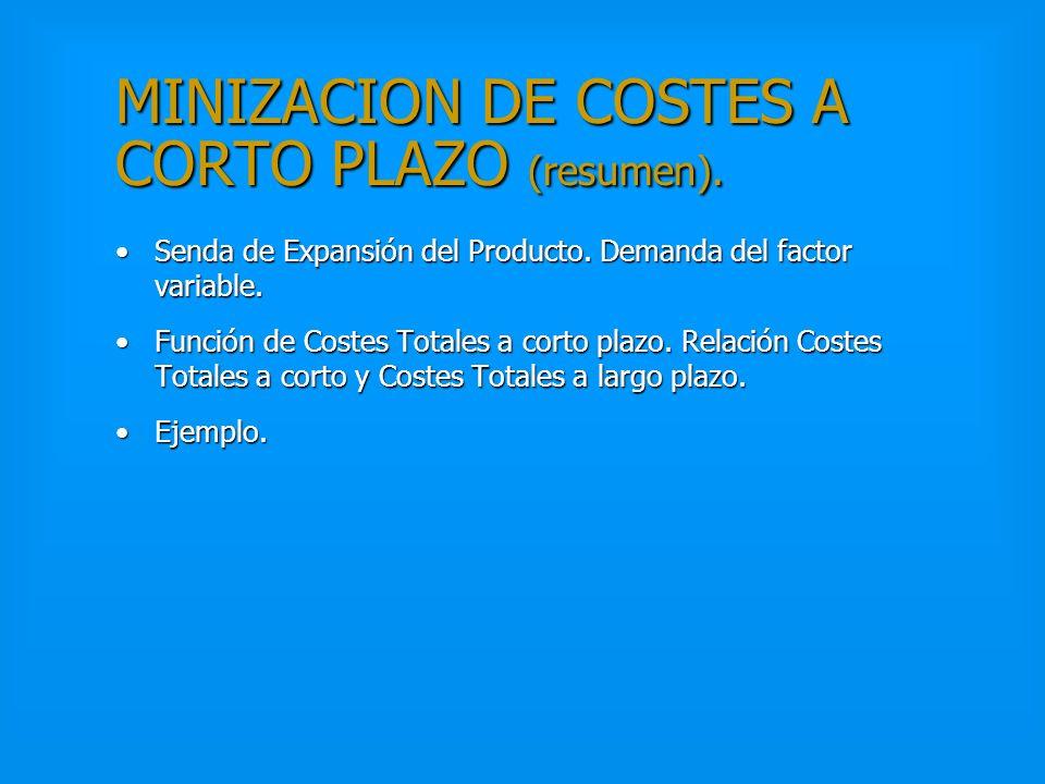 MINIZACION DE COSTES A CORTO PLAZO (resumen).