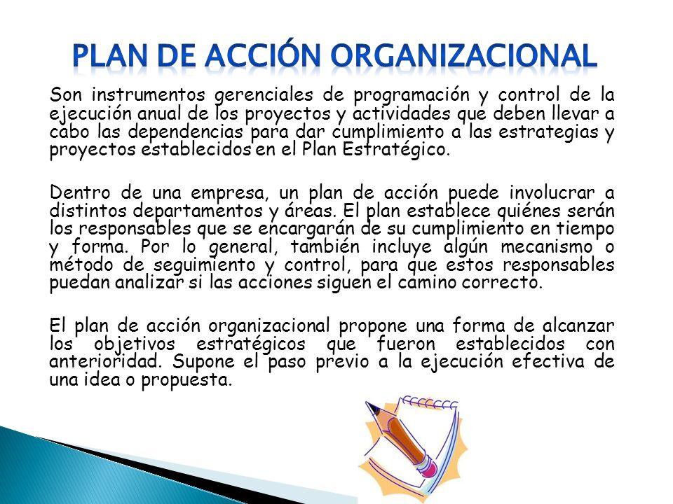 PLAN DE Acción organizacional