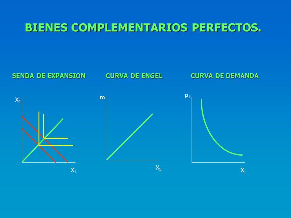BIENES COMPLEMENTARIOS PERFECTOS.