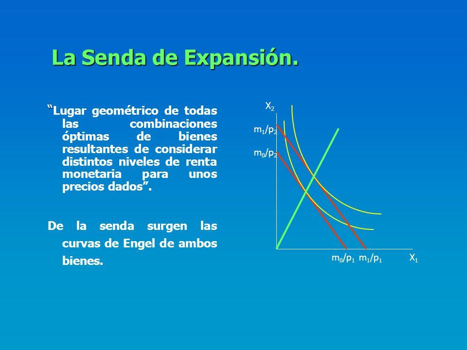 La Senda de Expansión. X2.