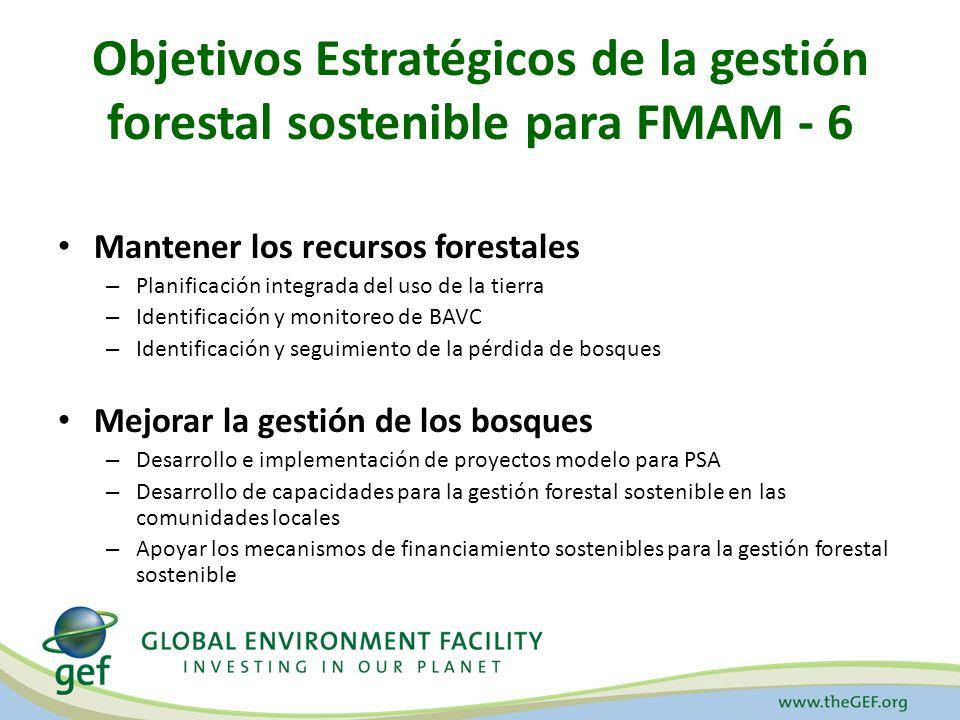 Objetivos Estratégicos de la gestión forestal sostenible para FMAM - 6