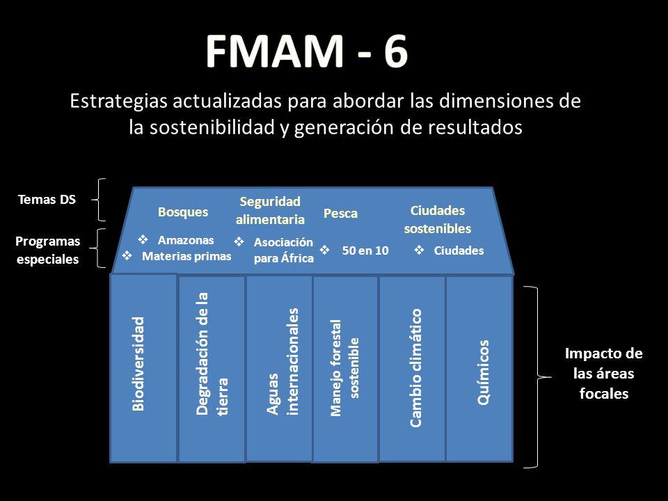 FMAM - 6 Estrategias actualizadas para abordar las dimensiones de la sostenibilidad y generación de resultados.