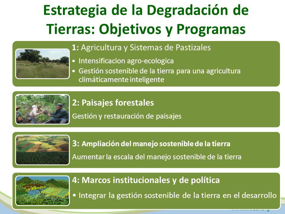 Estrategia de la Degradación de Tierras: Objetivos y Programas