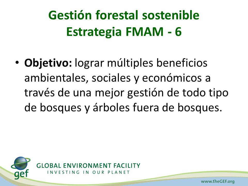 Gestión forestal sostenible Estrategia FMAM - 6