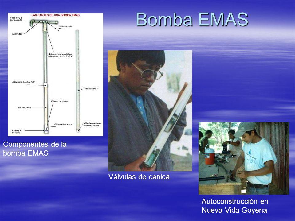 Bomba EMAS Componentes de la bomba EMAS Válvulas de canica