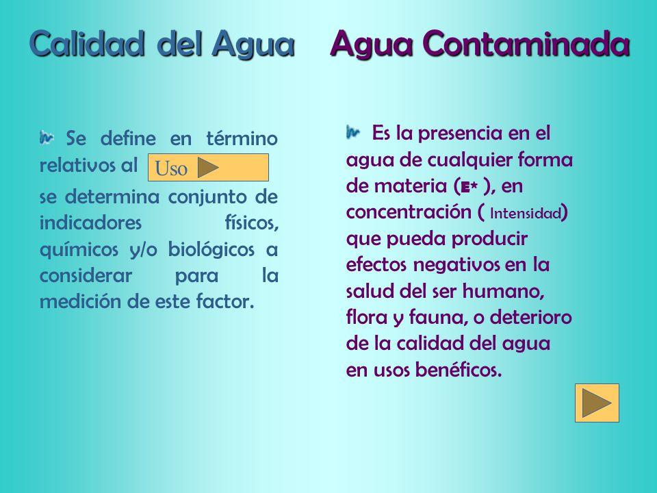 Calidad del Agua Agua Contaminada