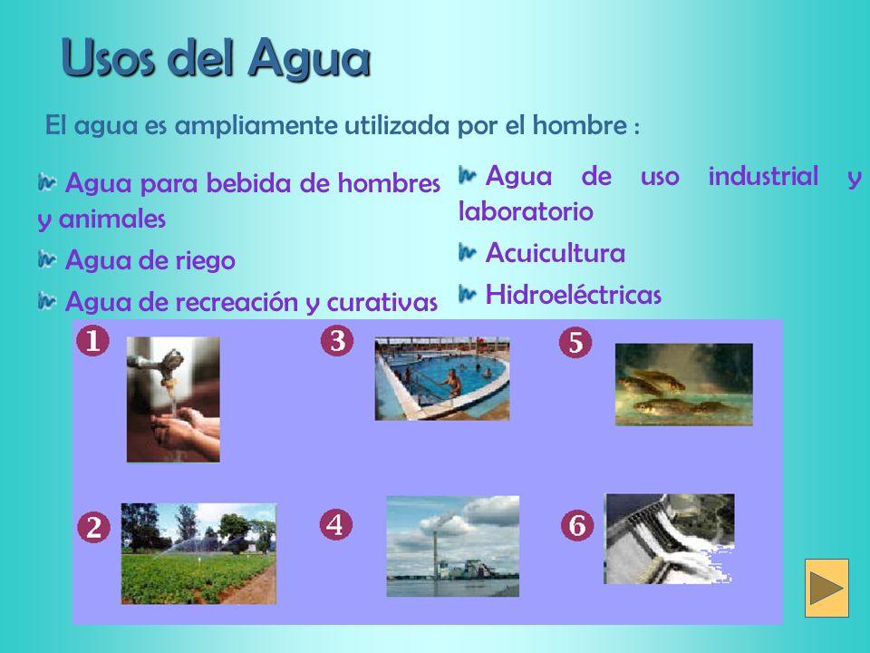 El agua secci n qu mica de alimentos y aguas ppt descargar for Tipos de estanques para acuicultura