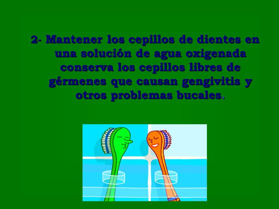 2- Mantener los cepillos de dientes en una solución de agua oxigenada conserva los cepillos libres de gérmenes que causan gengivitis y otros problemas bucales.