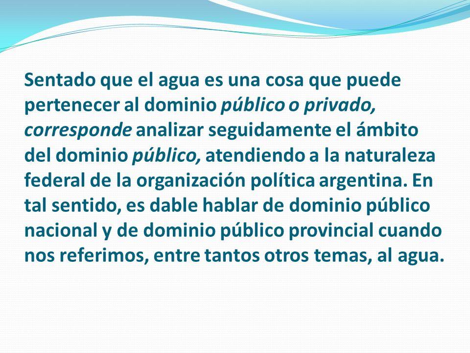 Sentado que el agua es una cosa que puede pertenecer al dominio público o privado, corresponde analizar seguidamente el ámbito del dominio público, atendiendo a la naturaleza federal de la organización política argentina.