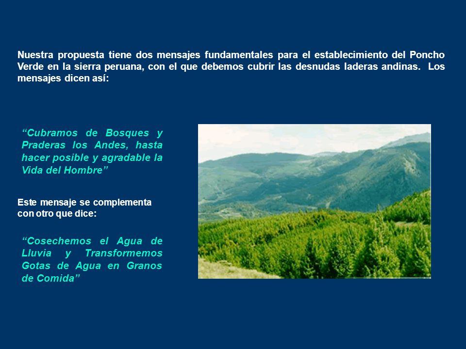 Nuestra propuesta tiene dos mensajes fundamentales para el establecimiento del Poncho Verde en la sierra peruana, con el que debemos cubrir las desnudas laderas andinas. Los mensajes dicen así: