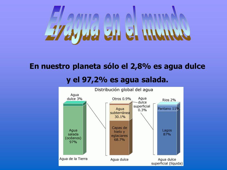 En nuestro planeta sólo el 2,8% es agua dulce