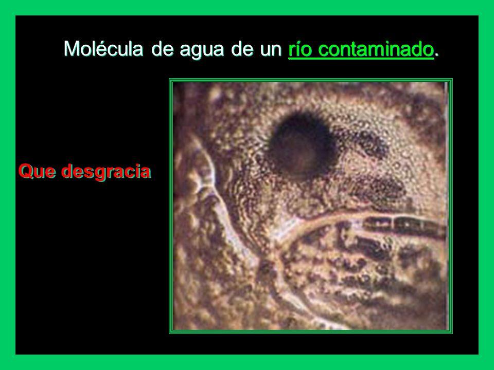 Molécula de agua de un río contaminado.