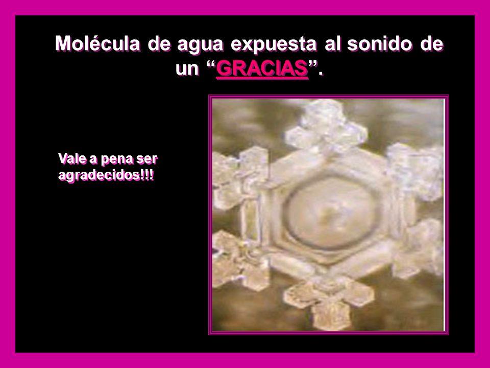 Molécula de agua expuesta al sonido de un GRACIAS .