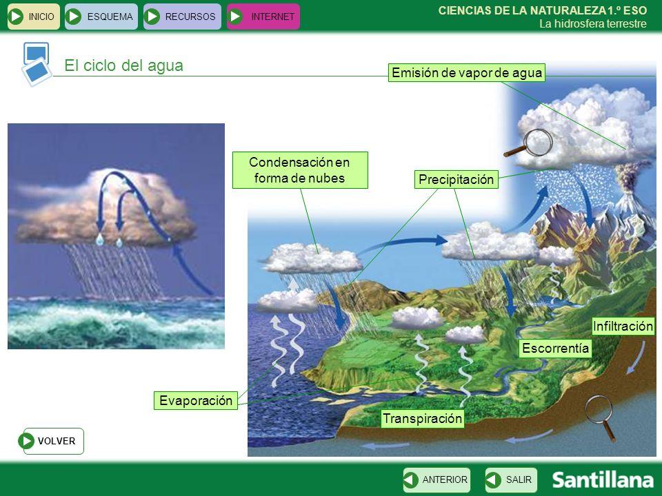 El ciclo del agua Emisión de vapor de agua