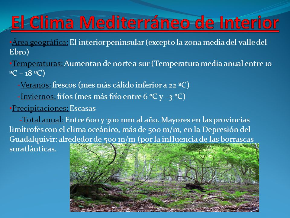 Clima mediterr neo rea geogr fica el territorio for Clima mediterraneo de interior