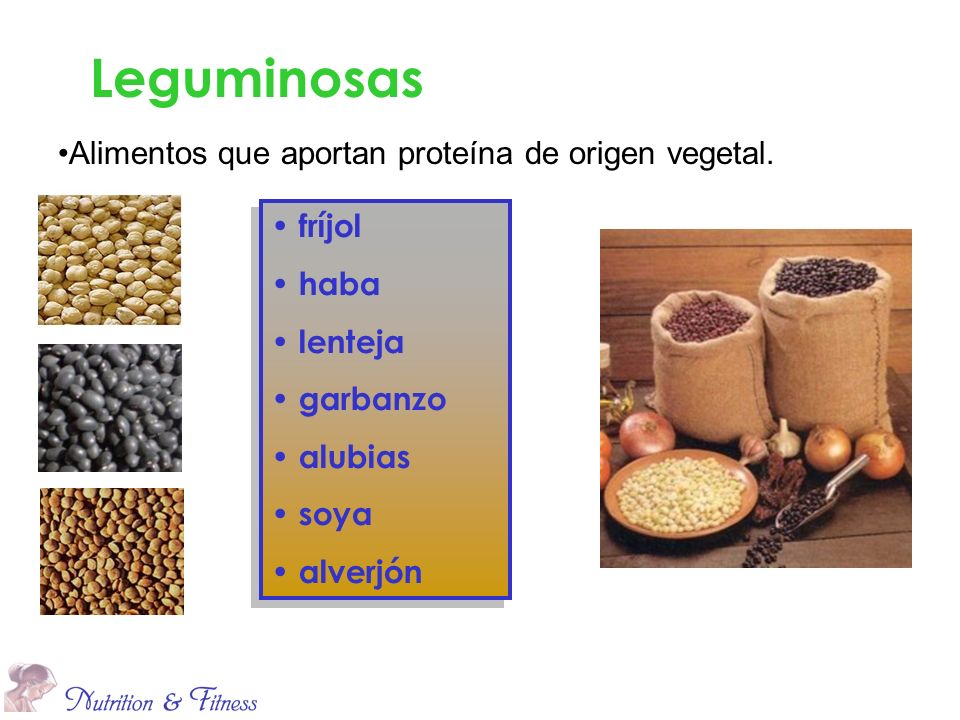 Leguminosas Alimentos que aportan proteína de origen vegetal. fríjol