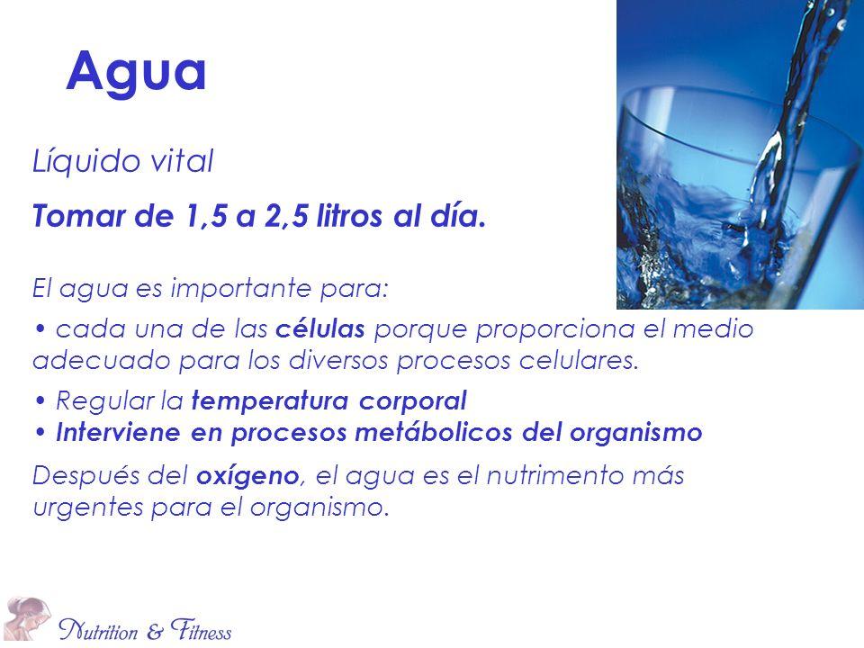 Agua Líquido vital Tomar de 1,5 a 2,5 litros al día.