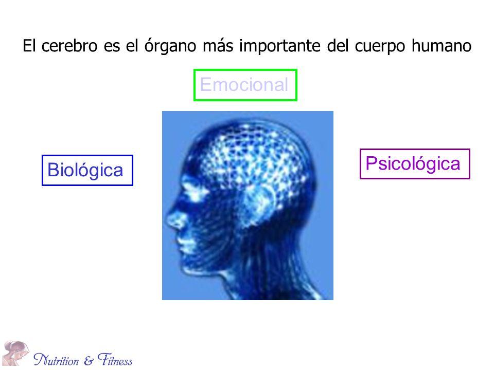 Emocional Psicológica Biológica