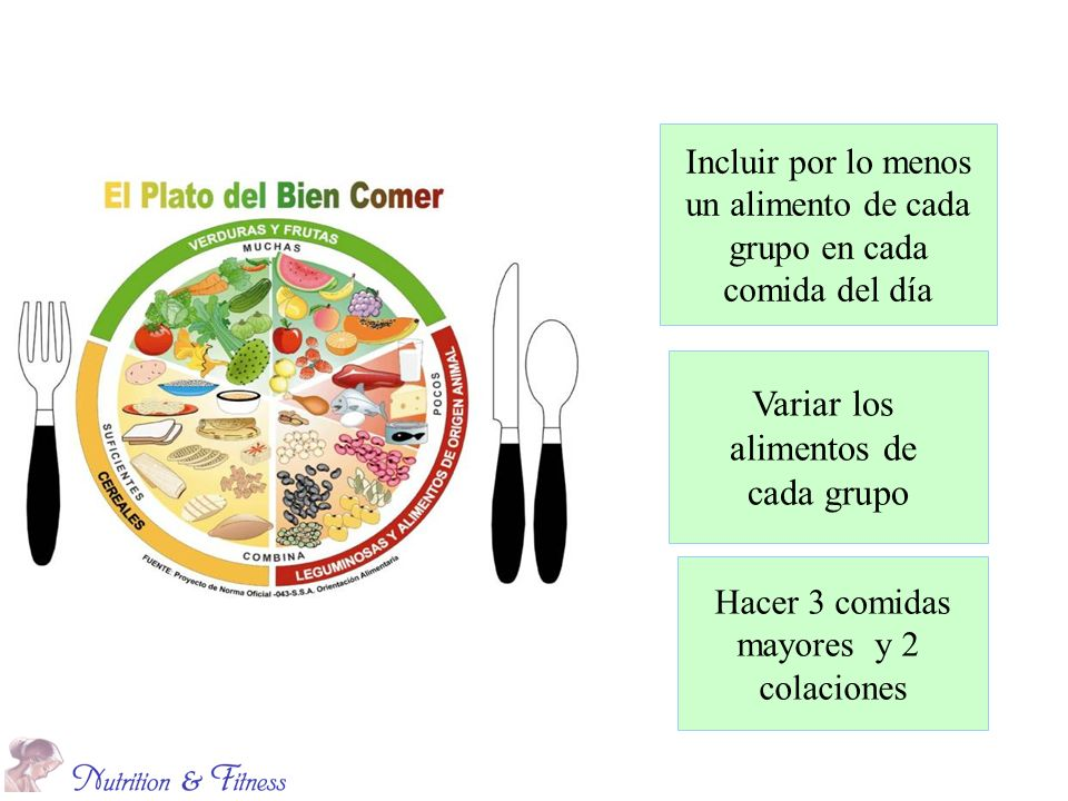 Variar los alimentos de cada grupo Incluir por lo menos
