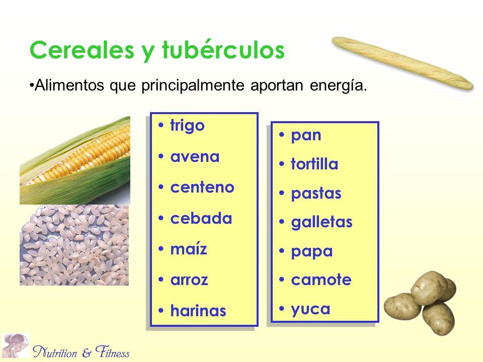 Cereales y tubérculos Alimentos que principalmente aportan energía.
