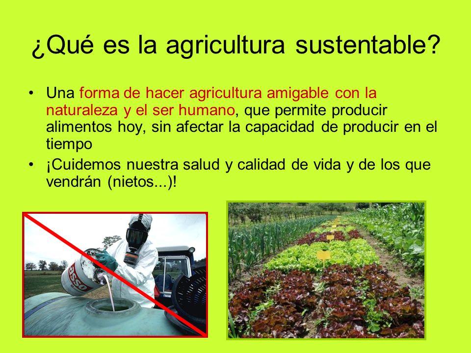 ¿Qué es la agricultura sustentable