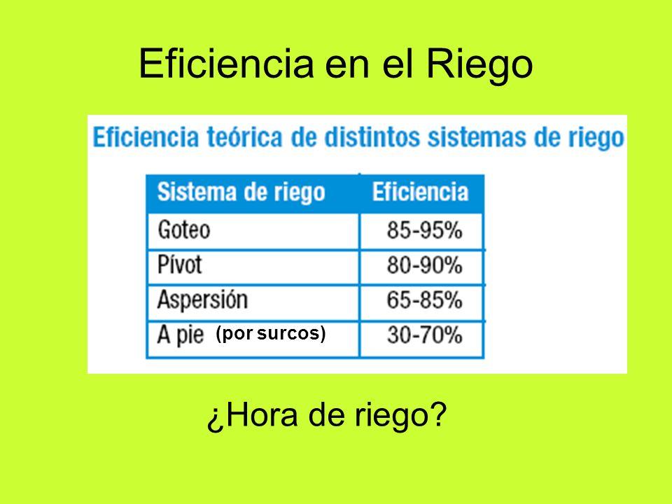 Eficiencia en el Riego (por surcos) ¿Hora de riego