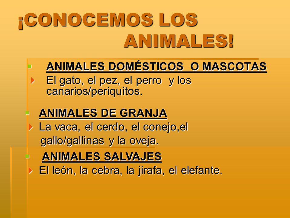 ¡CONOCEMOS LOS ANIMALES!