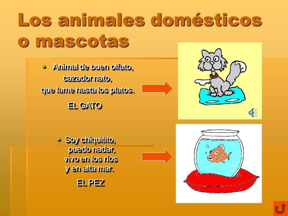 Los animales domésticos o mascotas