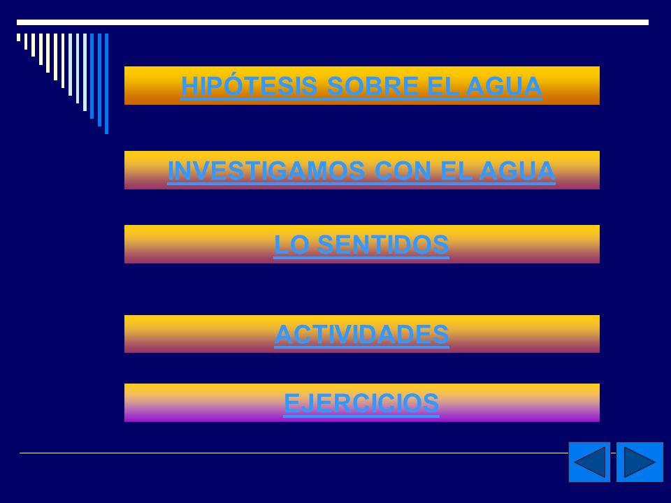 HIPÓTESIS SOBRE EL AGUA INVESTIGAMOS CON EL AGUA
