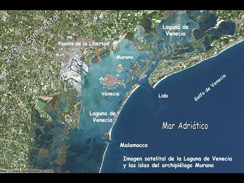 Mar Adriático Laguna de Venecia Sector Continental Laguna de Venecia