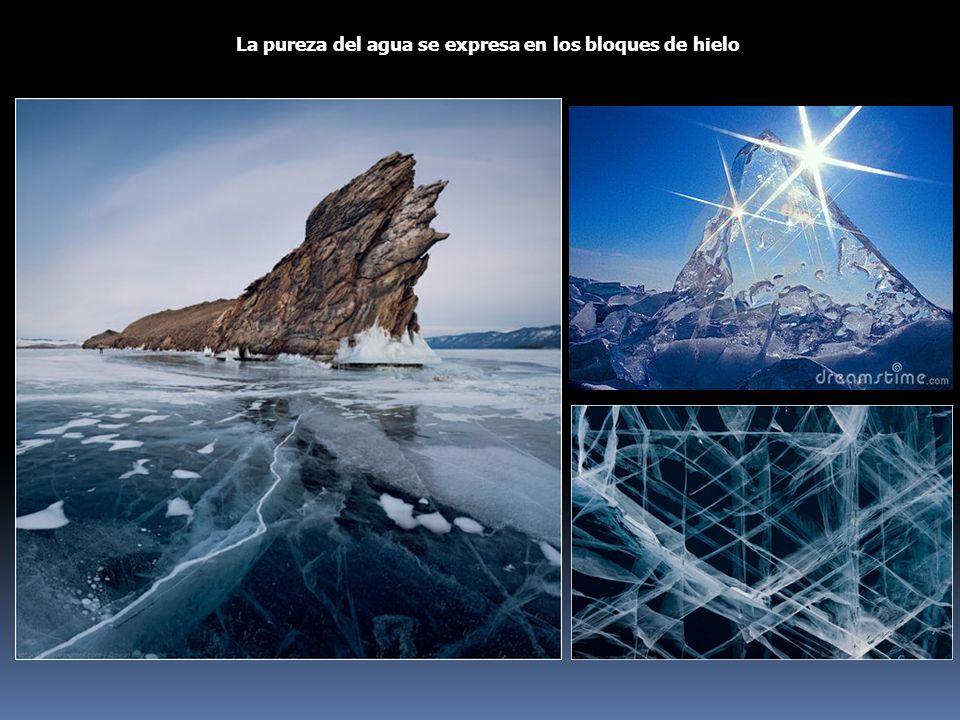 La pureza del agua se expresa en los bloques de hielo