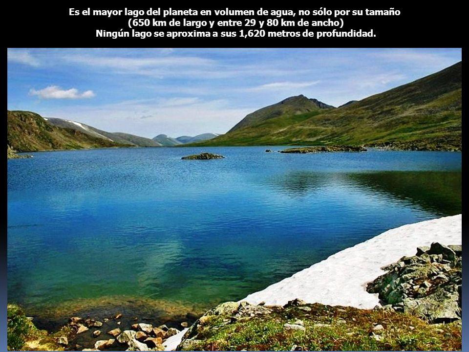 Es el mayor lago del planeta en volumen de agua, no sólo por su tamaño