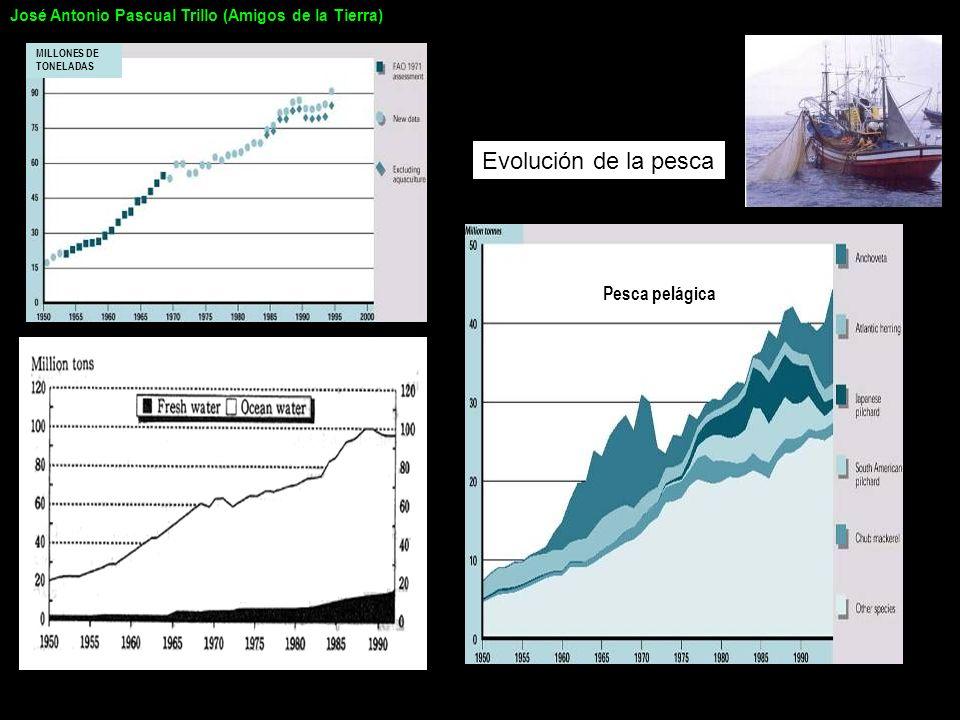 Evolución de la pesca Pesca pelágica