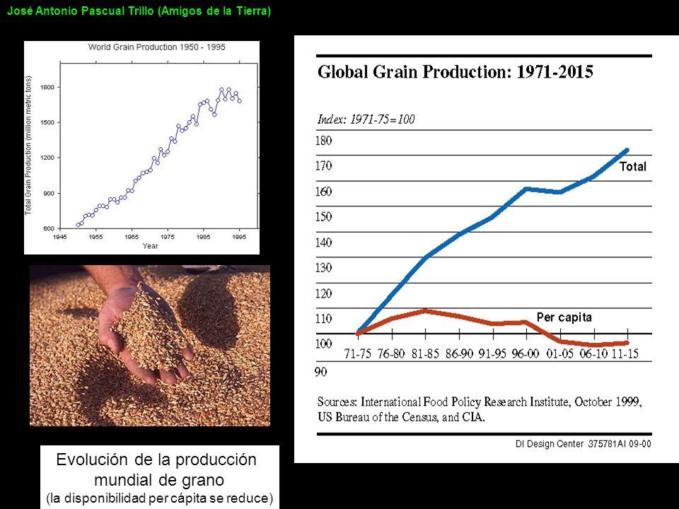 Evolución de la producción mundial de grano