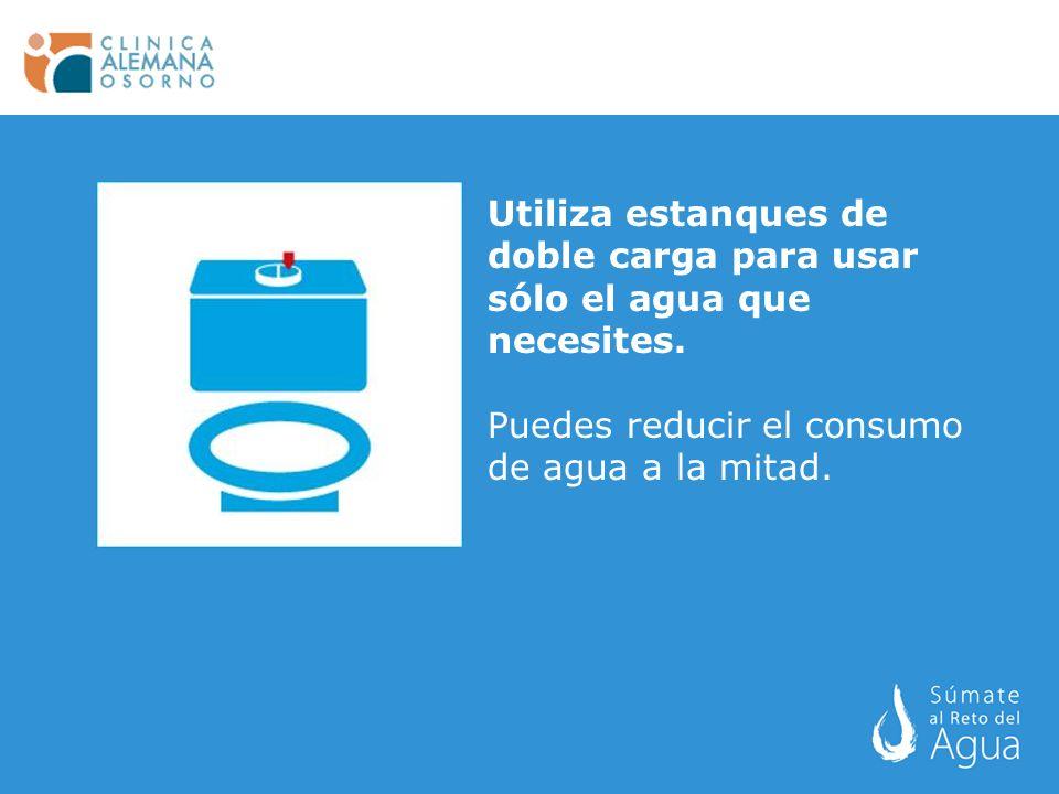 Utiliza estanques de doble carga para usar sólo el agua que necesites.